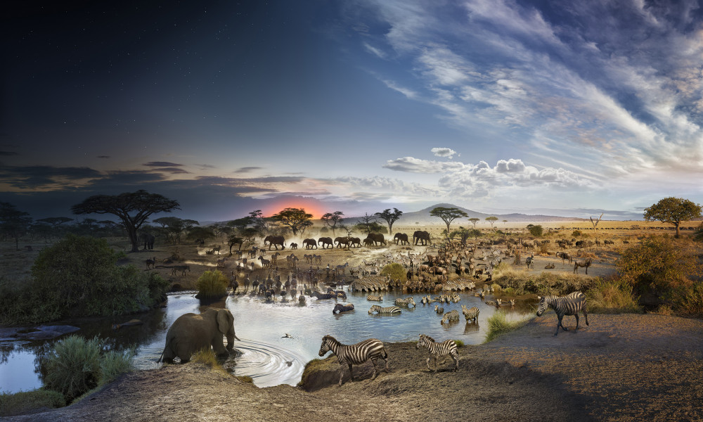 Photographer Stephen Wilkes, Day to Night at the Bryce Wolkowitz Gallery